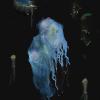 Waterghost