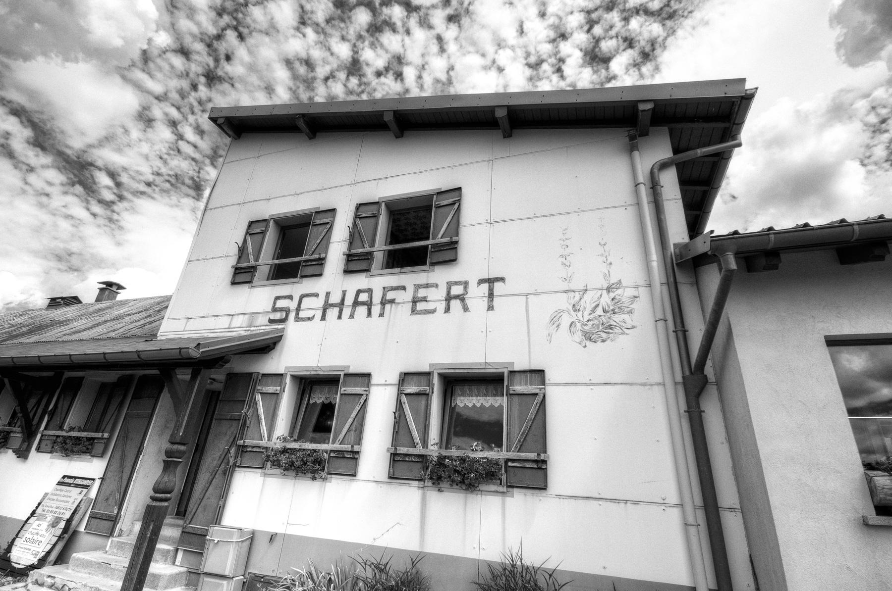 BW_Schafert